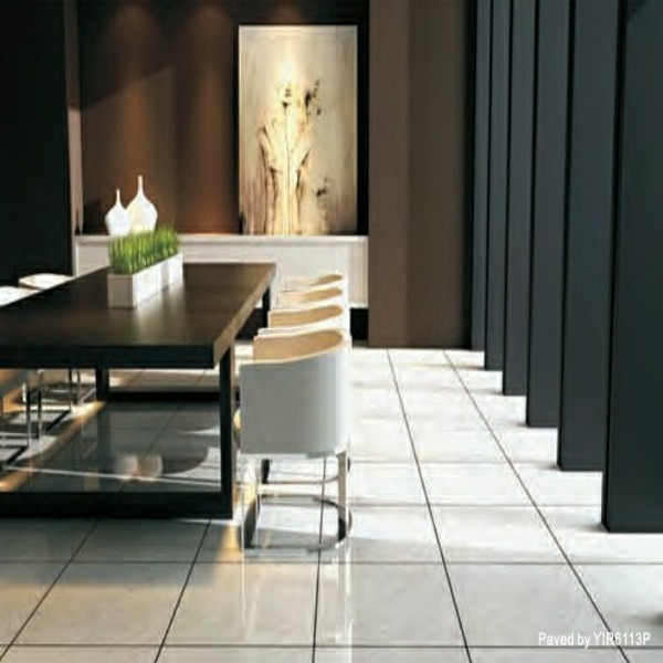 24 x 24 Porcelain Tiles